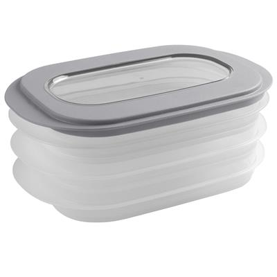 Sigma home meat keeper transparent grey